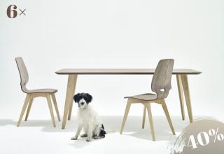 6×FINN Stuhl-Tisch Esche grau
